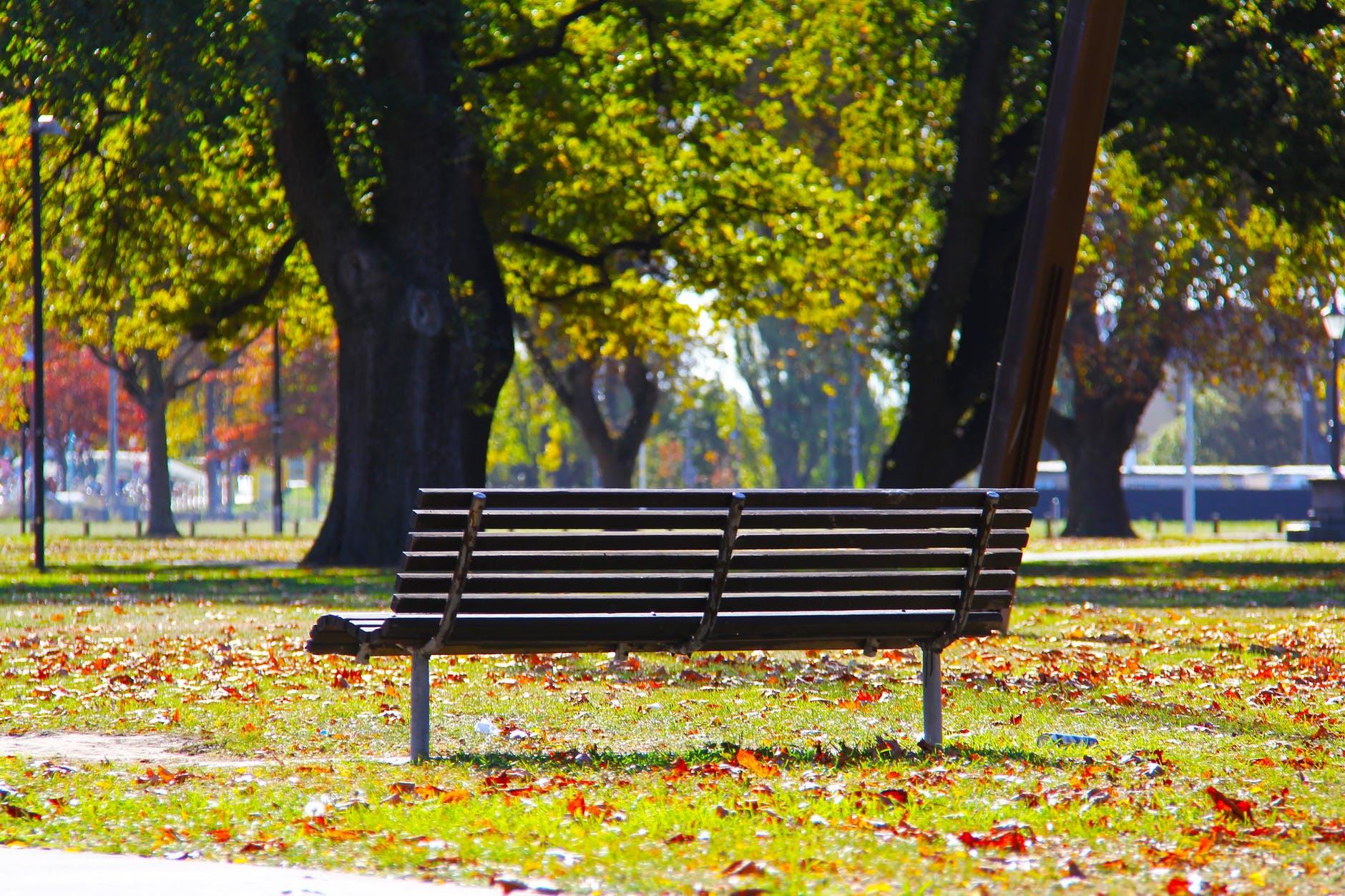 bench-blue-sky-city-160934.jpeg